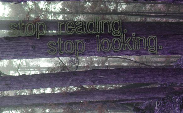 stopreadingstoplooking